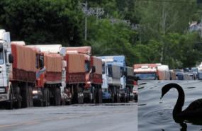 camionescisne