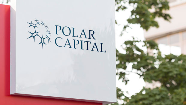 dl polar capital financial services wealth management