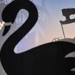 Cisnes-mercados-petroleo