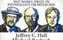 nobel medicina 2017 2