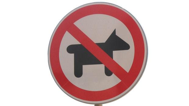 Valores perros Ibex 35