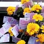 euros banknotes, eurozone, single currency, cash money. Image: epSos.de