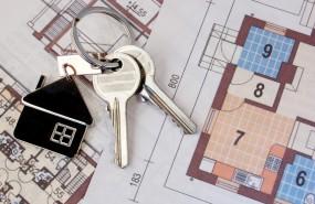 alquiler, vivienda